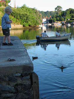 Early morning child feeding ducks from the quay
